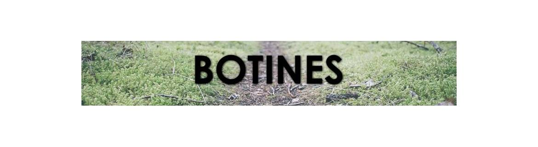 Botins